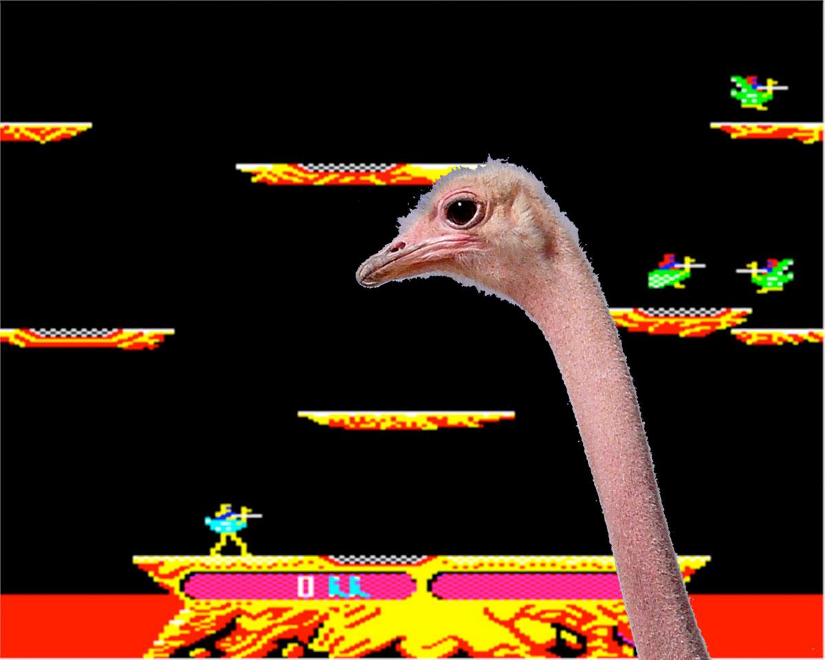 to Launch an Ostrich